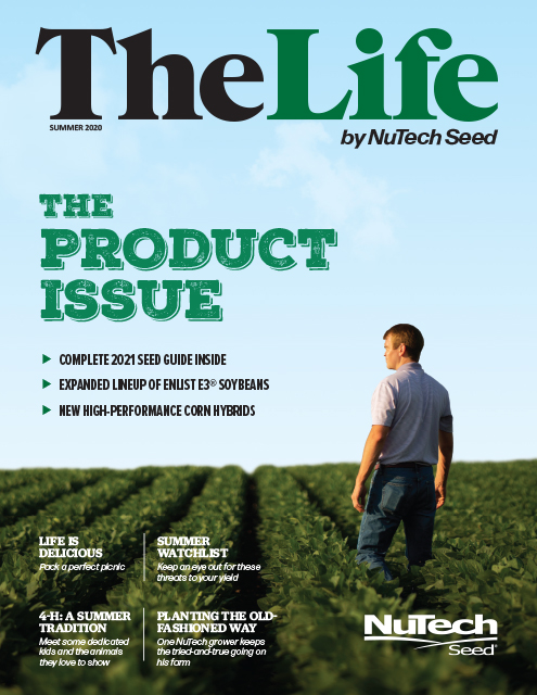 The Life - 2020 Product Issue