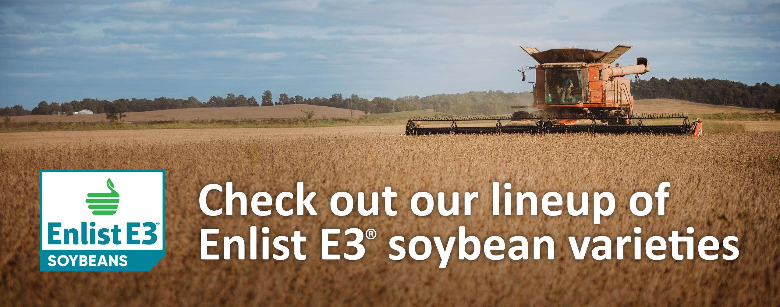 Enlist E3 soybeans